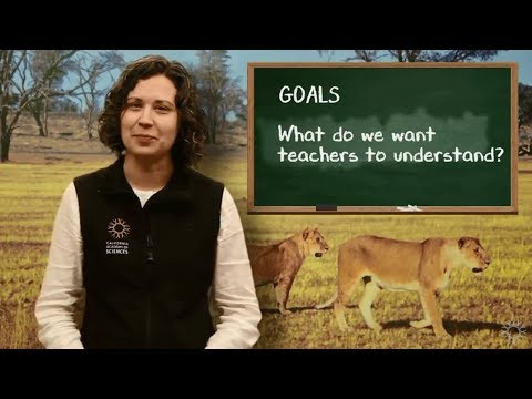 Elevate your Facilitation: Planning and Goals   California Academy of Sciences