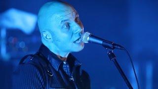Mad Heads - Psycholella (Live in Crystal Hall, концерт до 20-річчя гурту)