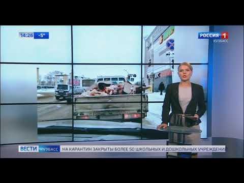 В Ленинске Кузнецком перевозили мясо в открытом кузове
