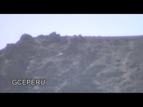 UFO VARIABLE FRIEND IN PERU - UFO AMIGO VARIABLE- ANALYZE PLEASE- GLADYS CORDOVA