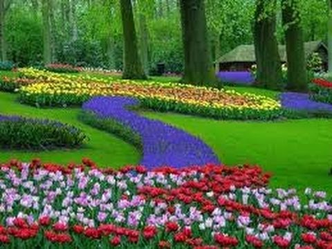 Hollande diaporama du parc de keukenhof youtube for Decoracion de jardines y parques