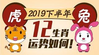 2019【生肖虎兔】下半年运势