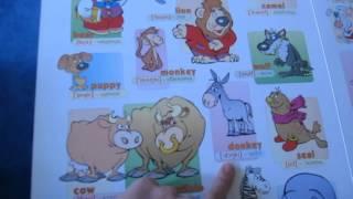 Учим животных на английском. Learn animals in English.