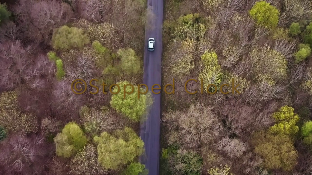 STOCK FOOTAGE - Aerial shot of a car driving down a rural forest road Mavic Pro