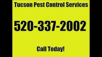 Tucson Pest Control Services Arizona