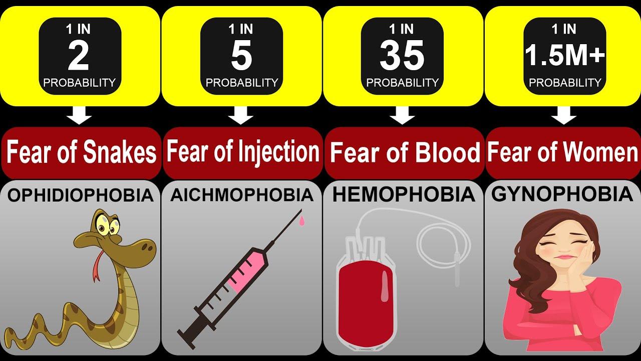 Probability Comparison: Fear & Phobia | Phobia And Fears