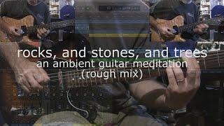 Ambient Guitar Album Track 4 - Rough Mix (Telecaster Baritone, Fatboy HF2, Strymon Timeline)