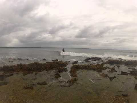 Steve and Herbo's SUP Session