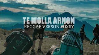Download Mp3 Te Molla Reggae Version