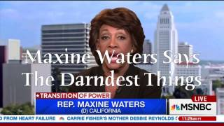 maxine-waters-says-the-darndest-things-supercuts-439