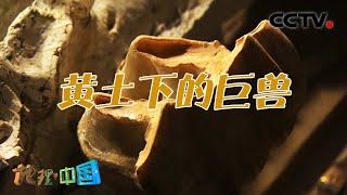 《地理·中国》 20201217 奇石密码·黄土下的巨兽| CCTV科教 - YouTube
