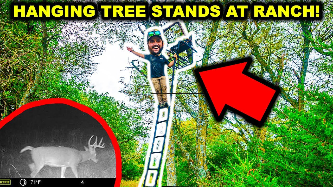 My FIRST TIME Hanging Deer TREE STANDS at My ABANDONED RANCH!!!