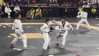 2017 Kukkiwon National Team Hanmadang