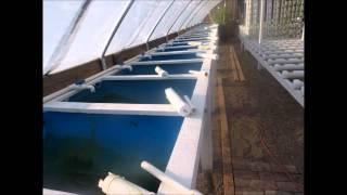 DIY Aquaponics Grow Bed Plans