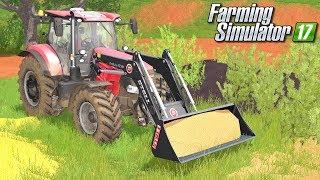 Obrządek świń i owiec - Farming Simulator 17 [PLATINUM] | #26