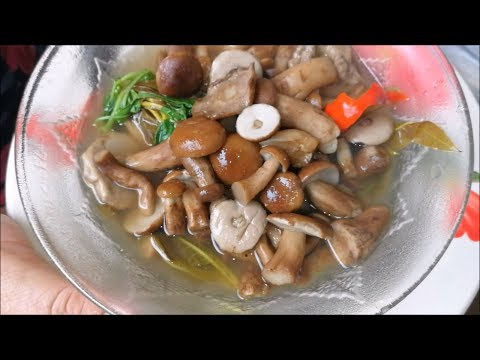 Amazing food of Eucalyptus mushroom curry ( Thai food recipes ) – Asian food at home