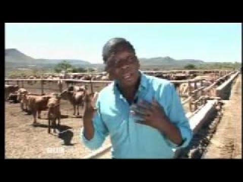 Africa Business Report 7 Botswana Investment BBC News