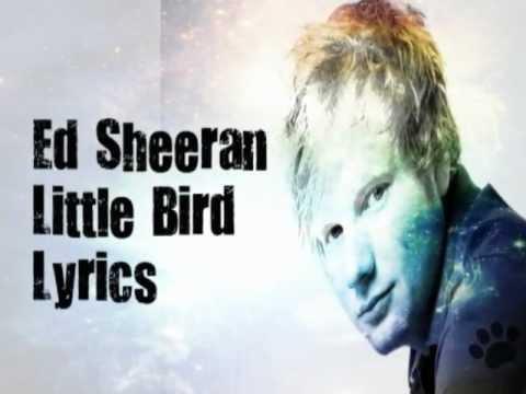 Ed Sheeran- Little Bird Lyrics