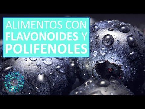 Que son los polifenoles y flavonoides