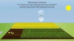Hiilijalanjälki lannoitteiden valmistuksessa ja viljelyssä