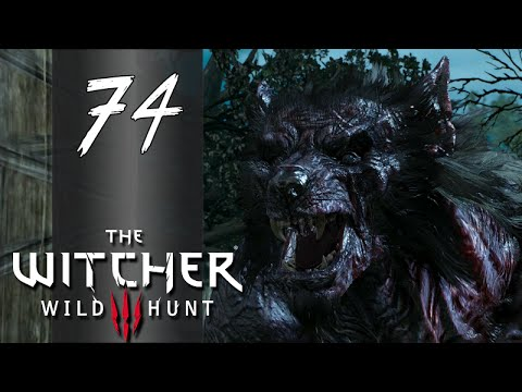 [Nameless] ► Let's Play The Witcher 3: Wild Hunt - Part 74