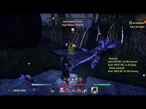 Magicka Sorcerer (SafeMode Sorc 2 Pets) – ESO: The Guardians