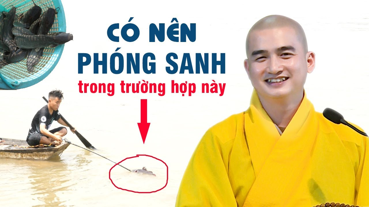 Trường hợp này CÓ NÊN PHÓNG SANH hay không ? ĐĐ. Thích Minh Thiền (ai cũng nên biết 25.06.2020)