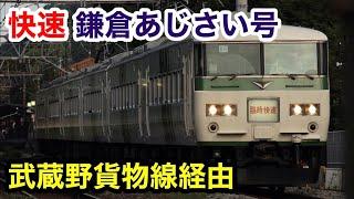 【国鉄185系】快速鎌倉あじさい号に乗った!鎌倉→青梅