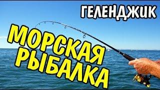 VLOG 377 Геленджик LIFE Морская рыбалка в Геленджике