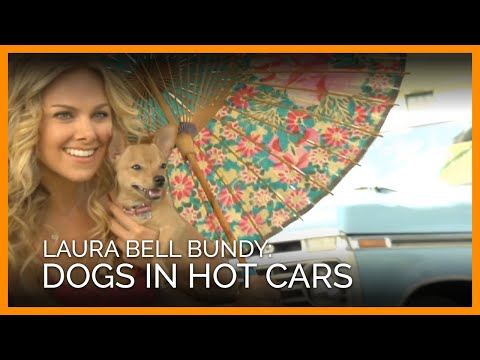 Laura Bell Bundy: Dogs in Hot Cars