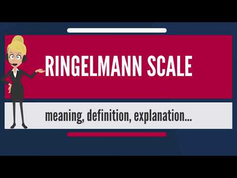 What is RINGELMANN SCALE? what does RINGELMANN SCALE mean? RINGELMANN SCALE meaning & explanation