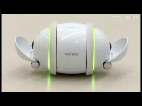 Sony Rolly Rolly