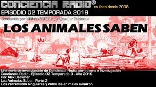 LOS ANIMALES SABEN - PARTE 2 - EL GRAN TERREMOTO DE FRIULI ITALIA - CONCIENCIA RADIO EP02.T09.2019