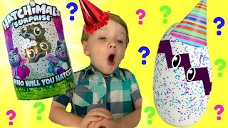 TWINS HATCHIMALS New 2017 Surprise Egg Opening! Two Babies Birthday Party Fun | Fizzy Toy Show