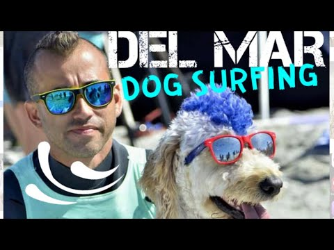 DOG BEACH DEL MAR SURF COMPETITION 2017