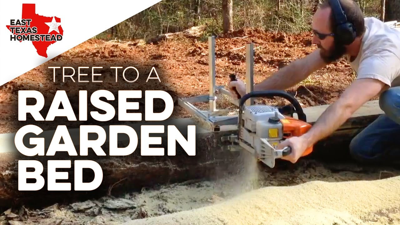 Building a raised garden bed with wood sides from a pine for Building a raised garden