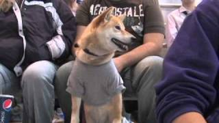 Great KC Pet Expo Commercial