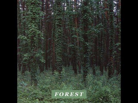 Driver - Forest [Full BeatTape]
