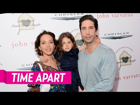 David Schwimmer and Zoe Buckman Are Taking Time Apart