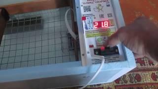 Инкубатор для яиц/Обзор
