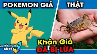 10 Sự Thật Ngỡ Ngàng Về Phim Hoạt Hình Pokemon Pikachu Mà Hiếm Có Ai Biết