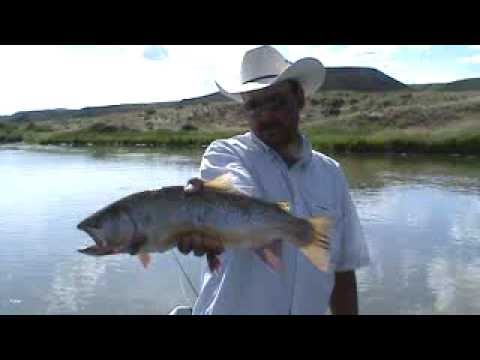 Fly fishing wyoming grey reef anglers north platte river for North platte fishing report