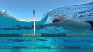 Coach Stuart McDougal - Total Immersion Swimming thumbnail