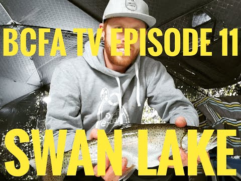 BC Fishing Addicts Episode 11- Swan Lake