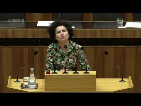 20170516 Nationalratssitzung 8 Alev Korun Grüne 1571877383