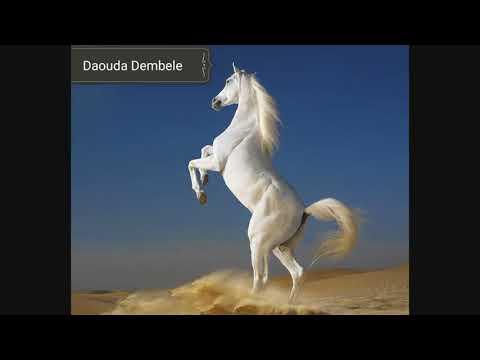 Djéli Daouda Dembele Hamadou Hamidou E Bamana Bourama