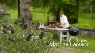 Sommargrill med Mattias Larsson - Grilla hel entrecote med indirekt grillning