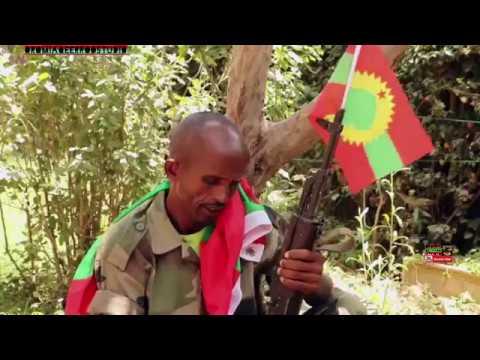 * * New * * Oromo music 2018  Araarsoo Soolee  ABOn Haa Lalisu Haawwisoo WBO tiin