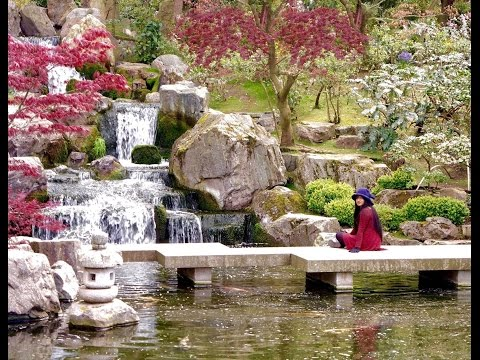 TRAVEL VLOG | KYOTO GARDEN 2016-  Holland Park (Best Park In London)