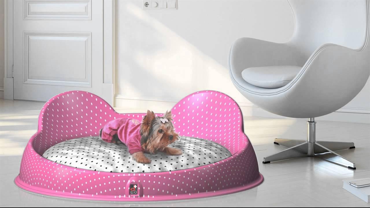 dog beds – designer dog beds – luxury dog bed – cat bed – pet bed  - dog beds – designer dog beds – luxury dog bed – cat bed – pet bed  youtube